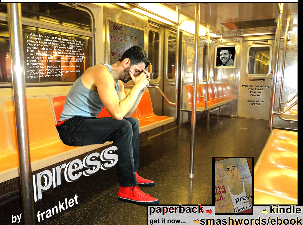 press - a novel by franklet